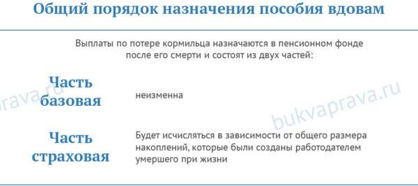 obshchij-poryadok-naznacheniya-posobiya-vdovam