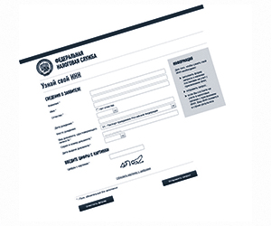 Как и где получить ИНН: заявление, бланк, документы