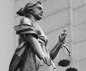 Не адвокатом единым