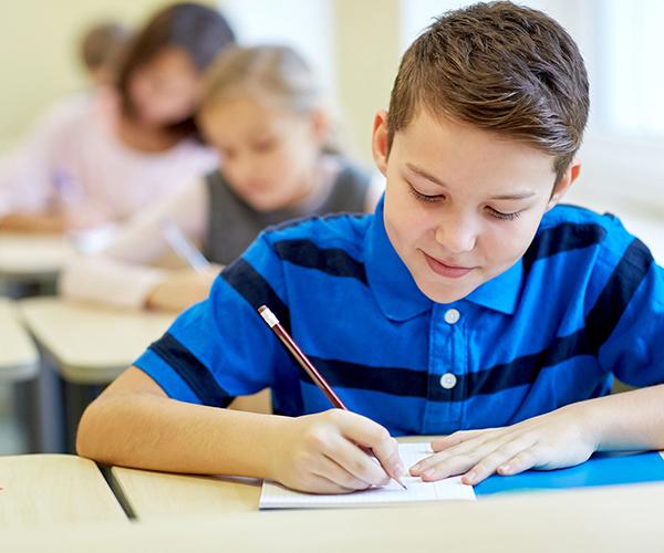 психолого педагогическая характеристика ученика пример готовый